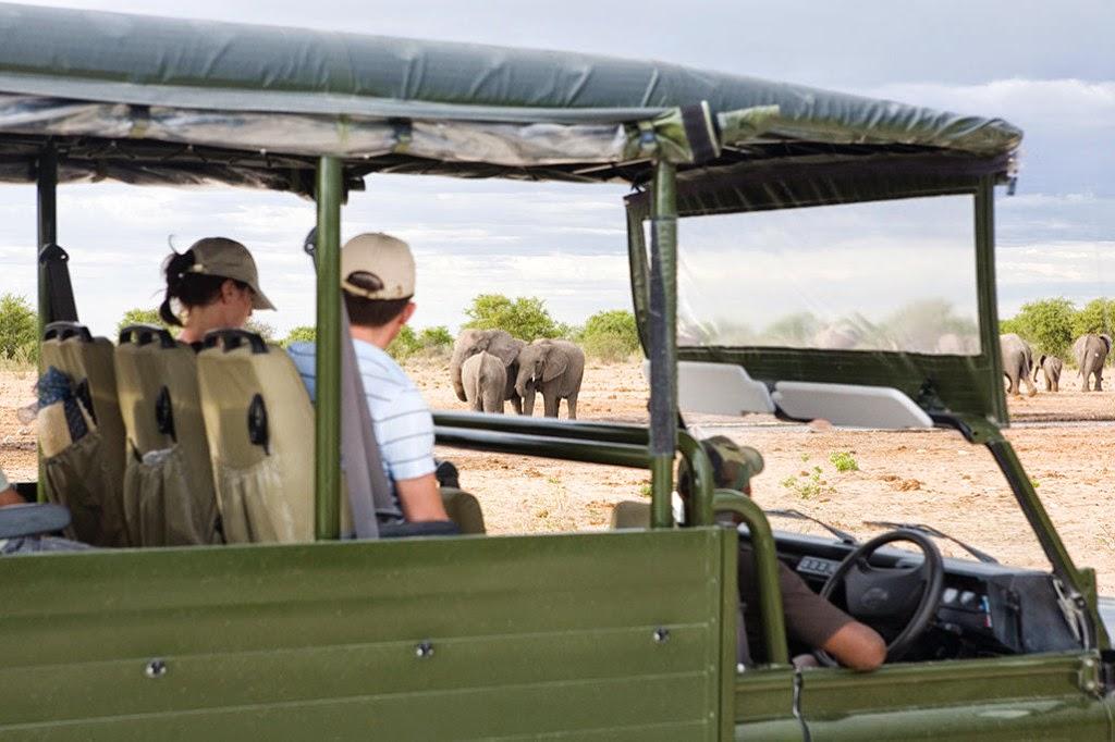 Game drives with Mushara, Etosha Park, Namibia