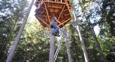 Unik kreatif –Lift Sepeda untuk Rumah Pohon Tanpa Tangga
