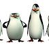 Divulgado novo trailer de 'Os Pinguins de Madagascar'