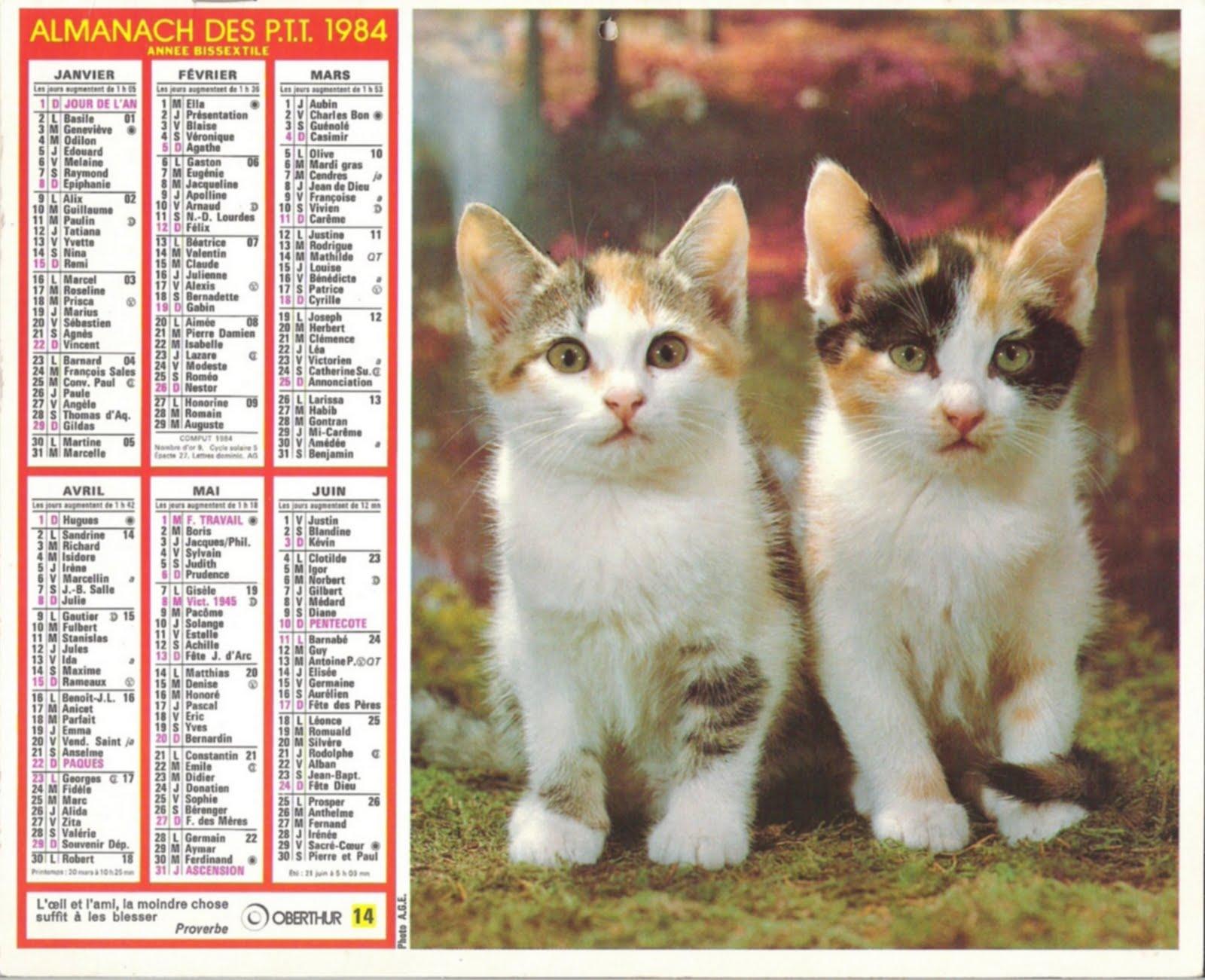 http://4.bp.blogspot.com/-19ru6qYHkLs/TevhKp1NUKI/AAAAAAAAC2M/XZLBRIDULjY/s1600/Almanach_0020_1984.jpg