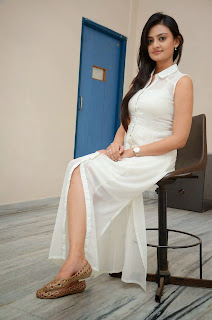 Nikitha Narayan Picture Gallery in White Dress at Ladies and Gentleman Movie Press Meet ~ Celebs Next