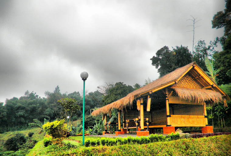 SAUNG TALES