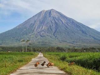 Gunung Semeru yang Mempesona