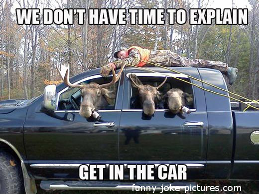 Funny Moose Hunting Redneck Picture