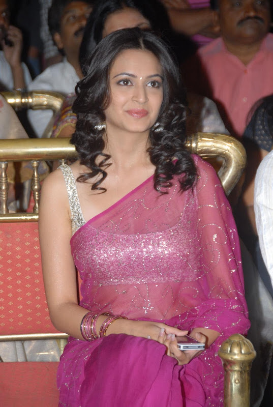Pawan Kalyans Upcoming Actress Kriti Kharbanda In Hot Saree Stills Photos hot images