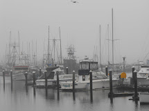 Coos Bay, Oregon
