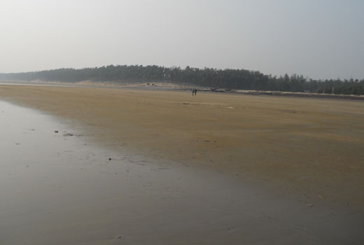 digha-beach, wide-flat-beach-in-india, sea-beach