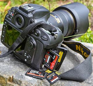 Nikon D800 Body Only - 36.3 MP