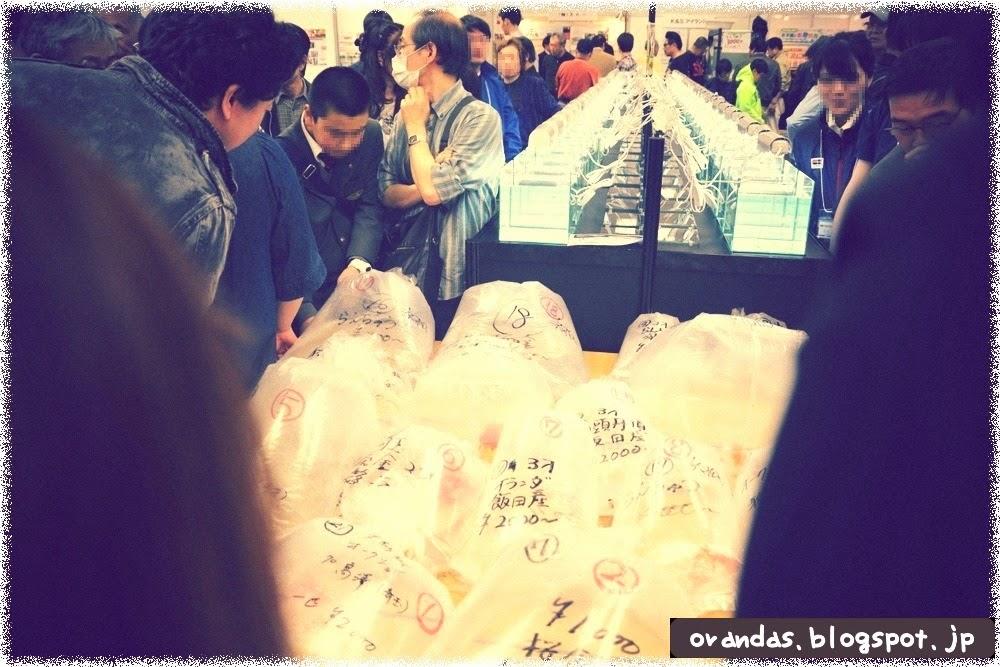 2014年日本観賞魚フェアの金魚オークションの出品魚の写真です。