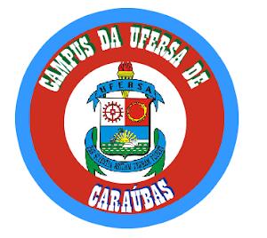 UFERSA DE CARAÚBAS