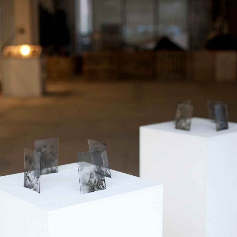 Jonathan Stead: Fragile Mind - Exhibition