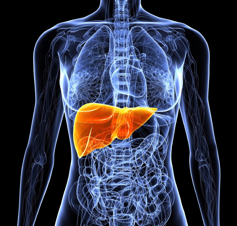 i what is liver disease