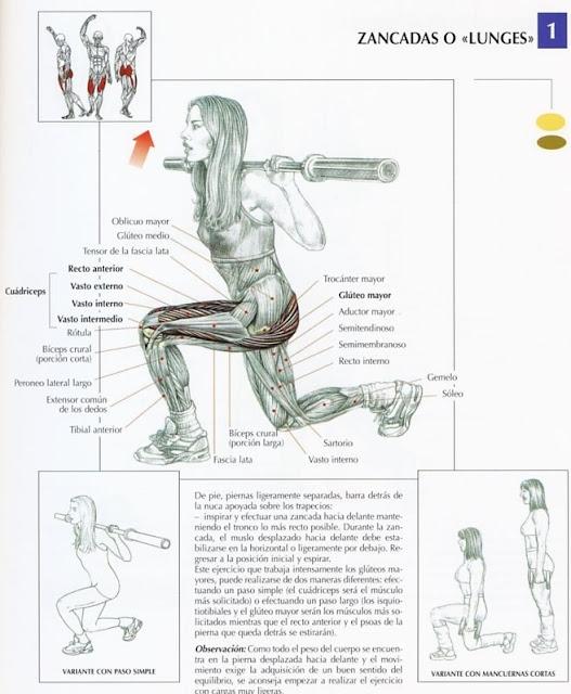 ejercicios para aumentar:
