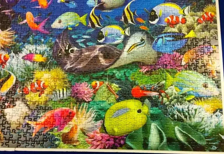 Ravensburger Underwater 2000 piece jigsaw puzzle close-up 4