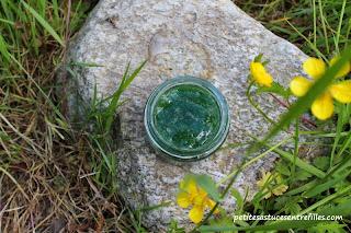http://www.petitesastucesentrefilles.com/2013/05/masque-purifiant-hydratant.html