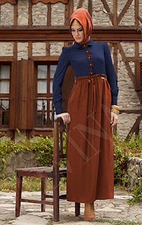 alvina 2014 elbise3 Alvina 2014 elbise Modelleri