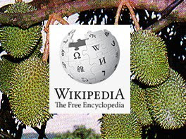 Durian In Wikipedia