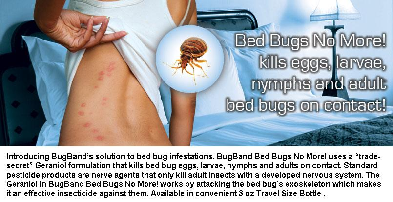 Bug Band Bed Bugs No More Review