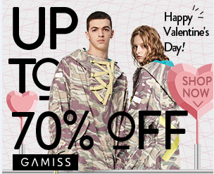 Gamiss V-Day Promo