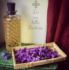 Oleolito di violetta