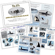 NEW Orca Booklet ADDED