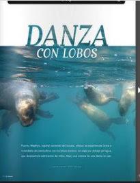 Danza con lobos marinos