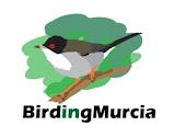 BirdingMurcia