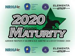 NEXT IN AGENDA: MATURITY IRHA/ELEMENTA 2020