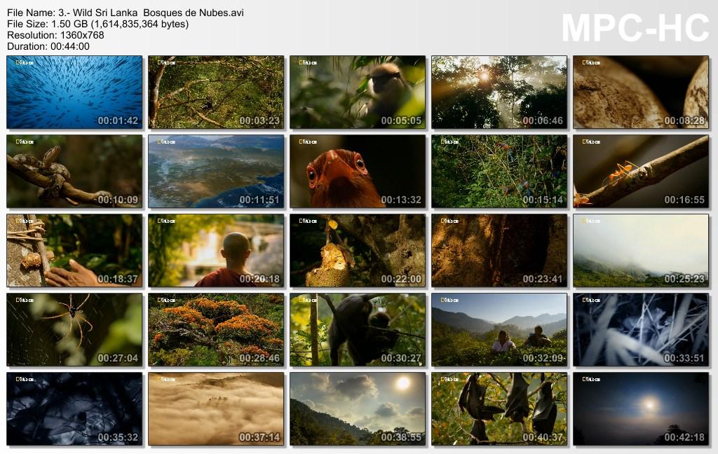 4GB|NATGEO|Wild Sri Lanka|HD 720p|3-3|MEGA|Taykun7000