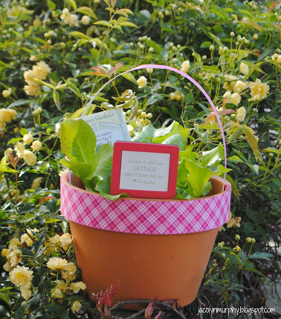 Michelle paige blogs easter hostess gift i just had to copy this amazing hostess gift from alexis at jac o lyn murphy she has the best punny gift ideas on her blog negle Images