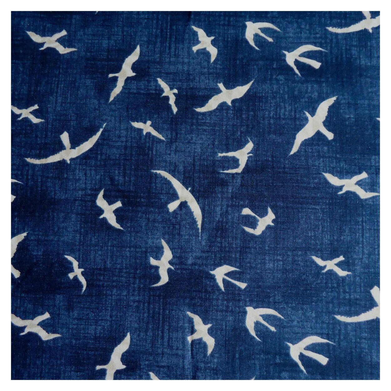 Seagull fabric by Janet Clare: Hearty Good Wishes at Moda Japan