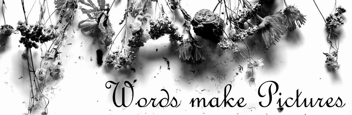 Words make Pictures
