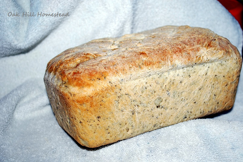 how to make barley bread at home