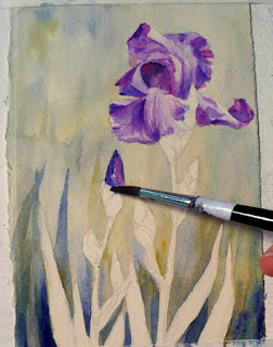 Painting a purple iris in watercolor
