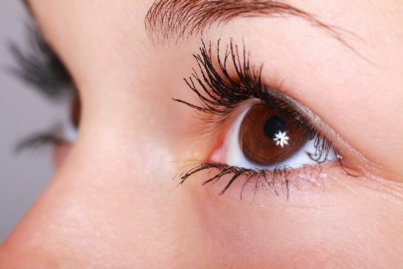 Grape seed oil, anti-ageing, sun control, SPF, under-eye cream