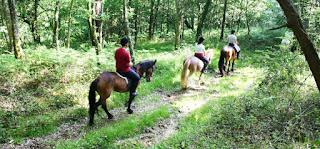 Rutas a caballo en Sanxenxo