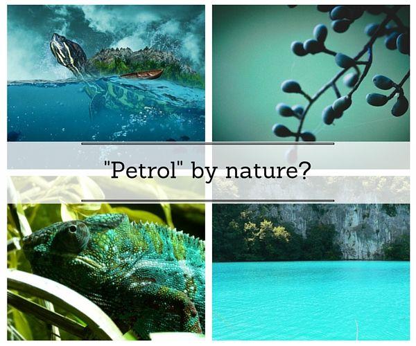 Welche Farbe Passt Zu Petrol blau und grün petrol eher blau oder eher grün