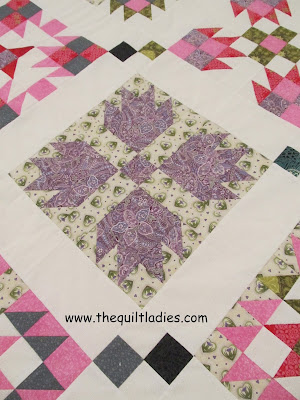 B Annie Quilt Pattern Book by Beth Strub