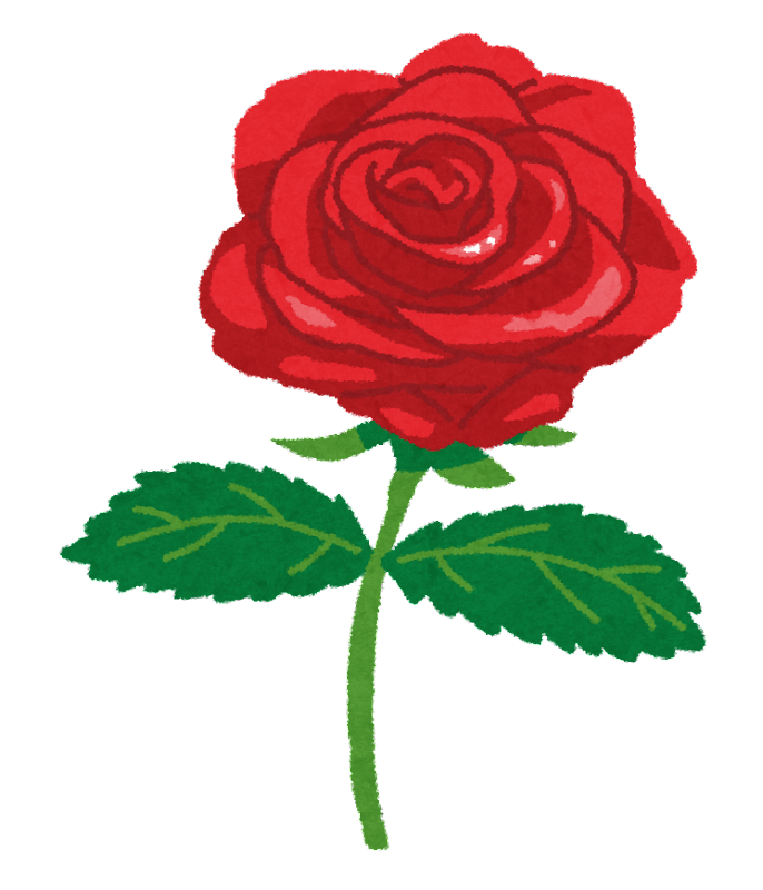 薔薇の画像 p1_29