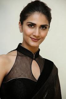 vaani kapoor new  stills in black saree(47)