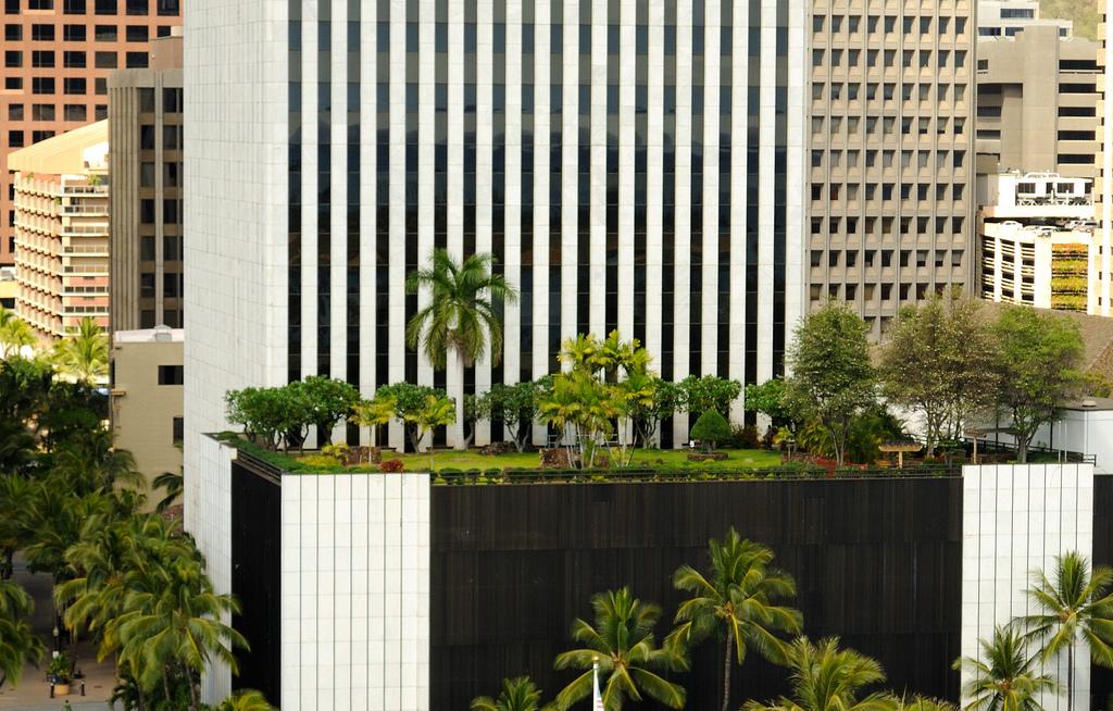 terrazas jardin