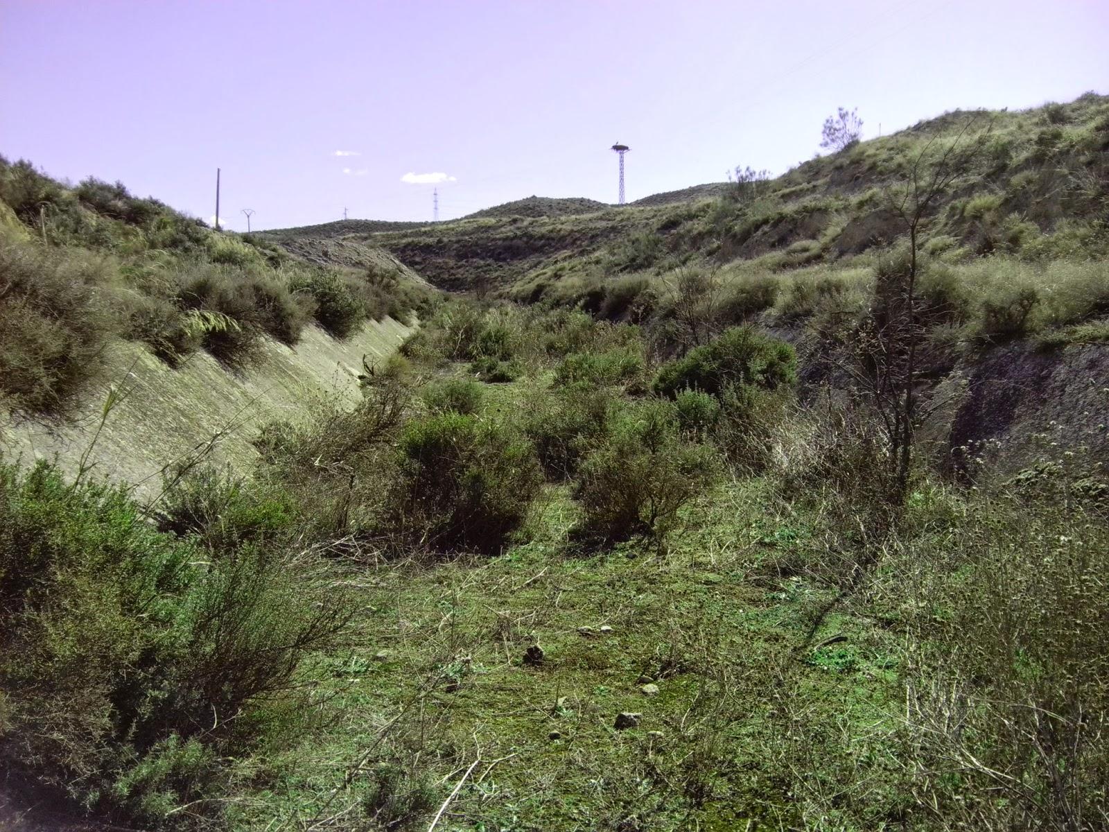 Cauce abandonado Canal Imperial de Aragón