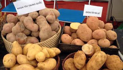 Mẹo phân biệt khoai tây Đà Lạt và khoai tây Trung Quốc