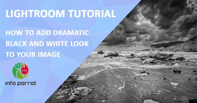 How to Add Dramatic Black and White Look in Lightroom