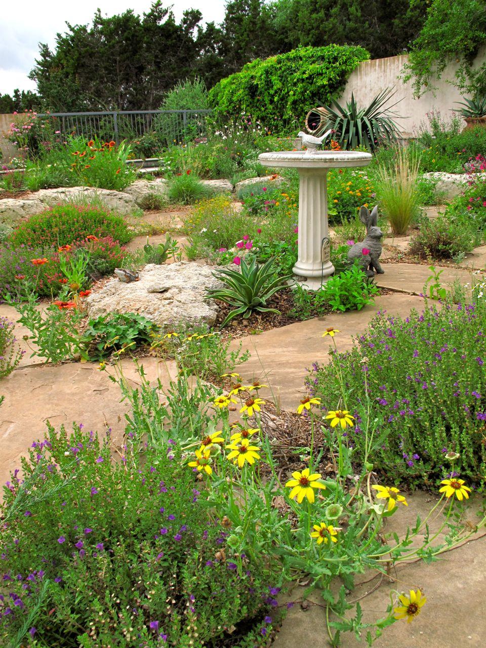 Rock rose small plants for the sunken garden for Garden plants for small gardens