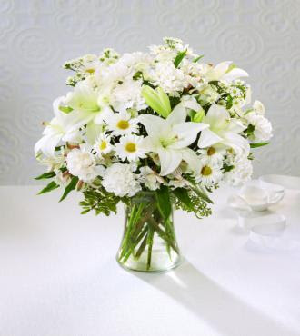 Diffe Types Of White Flowersdiffe Flowers