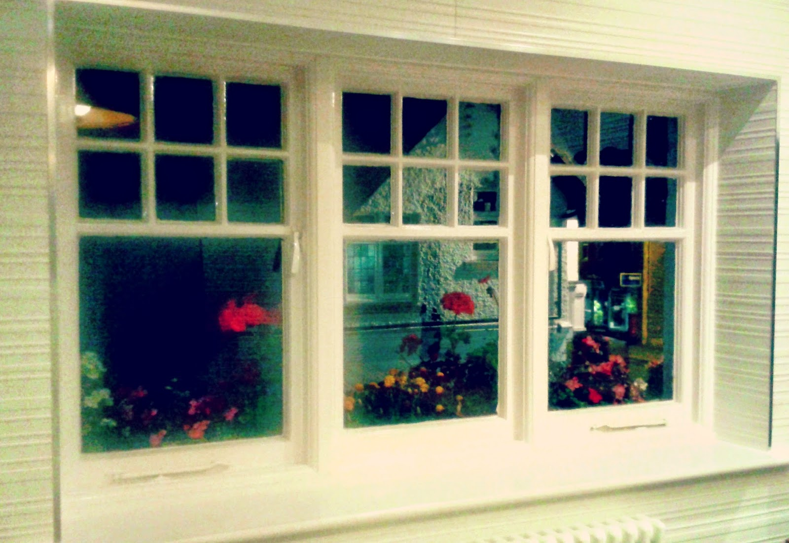 Project 365 #38 day 258 - Window boxes