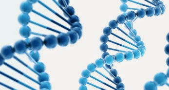 Pengertian Genetika Dan Substansi Genetika Manusia