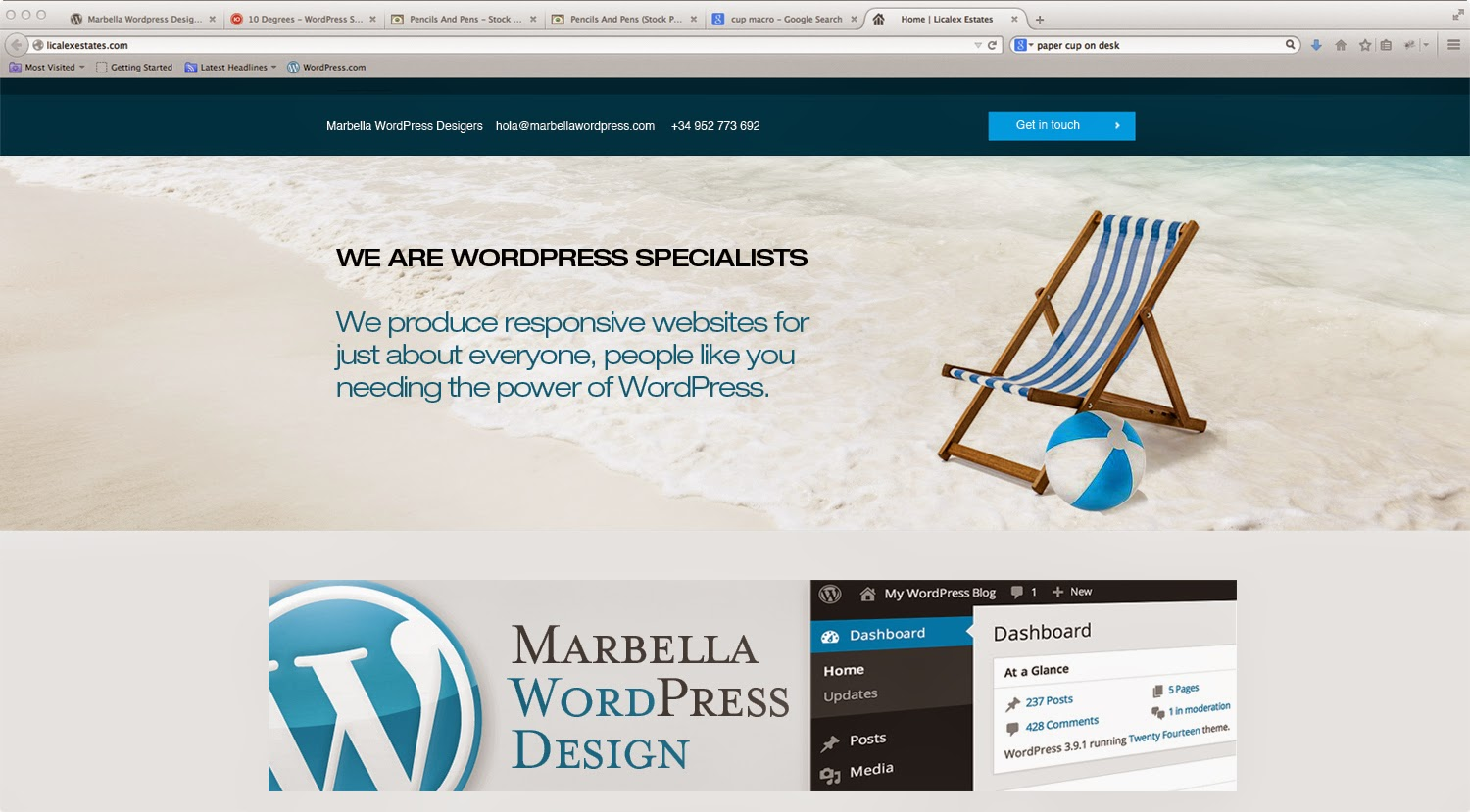 WordPress website development, themes and plugins specialists