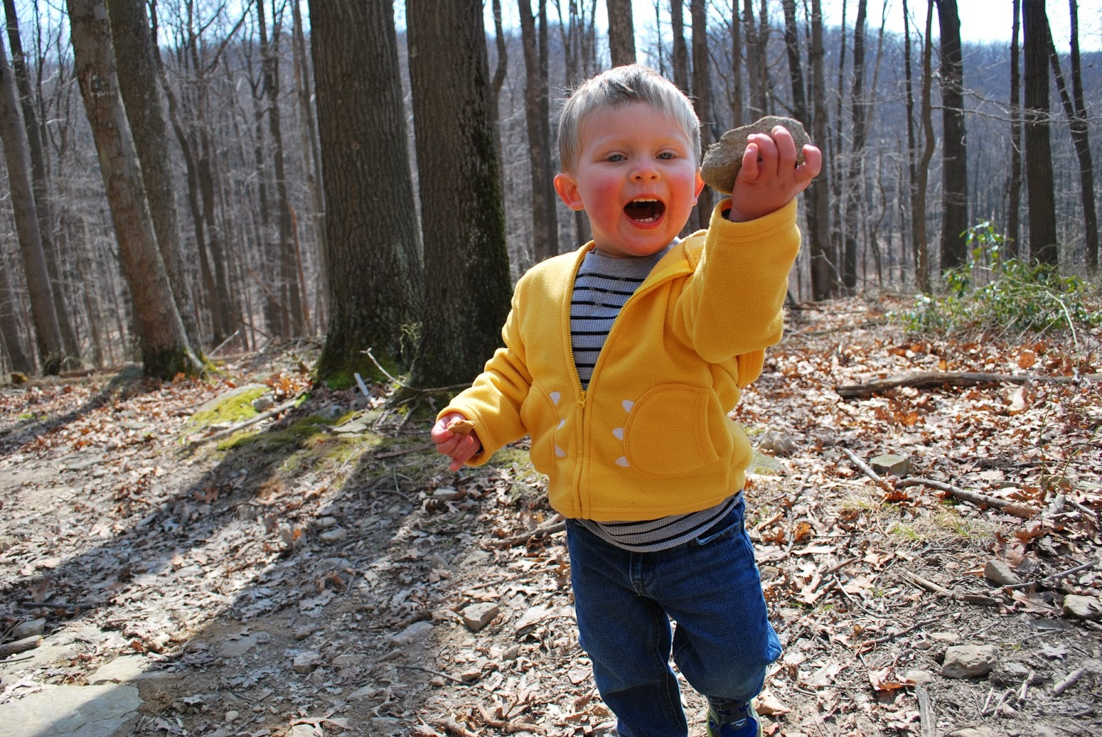 Toddler picking up rocks while hiking at Coopers Rock State Forest